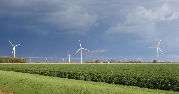 Sverige går före i klimatomställningen enligt IEA