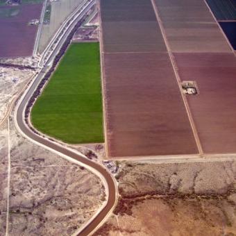 FN: Konsumtionen behöver minska för att bevara odlingsmark