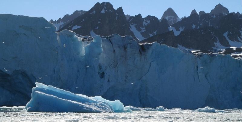 Riksrevisionen: Arktiska rådet måste effektiviseras