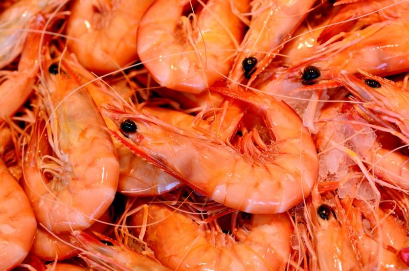 Svenskt räkfiske miljömärkt