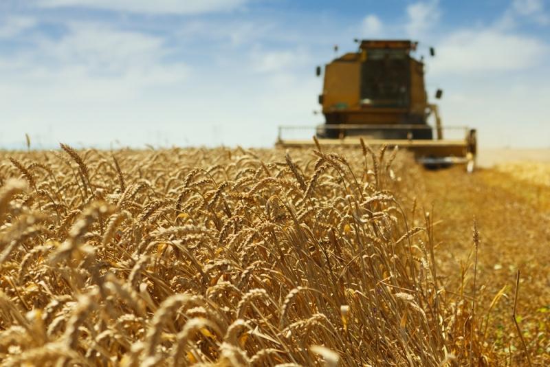 Hushållen och jordbruket släpper ut mest växthusgaser