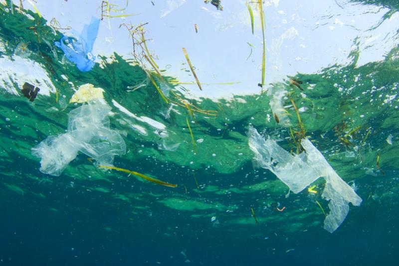 Plastavfall kan brytas ned till nanopartiklar i havet