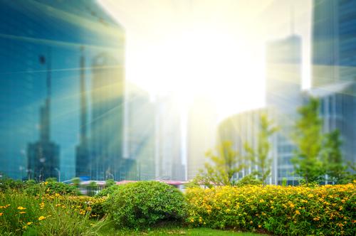 Kina och Japan bäst på miljöcertifiering