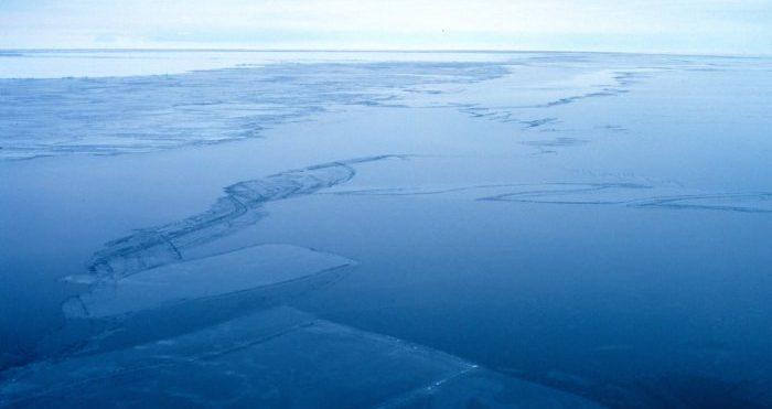 Nu skapas världens största marina skyddsområde