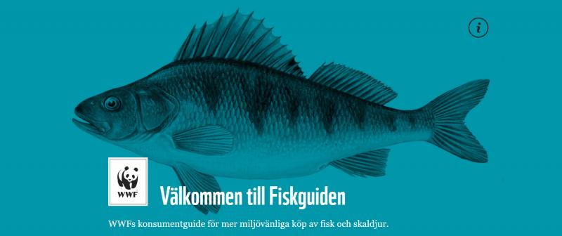 Fiskarna som får rött ljus i WWF:s nya fiskguide