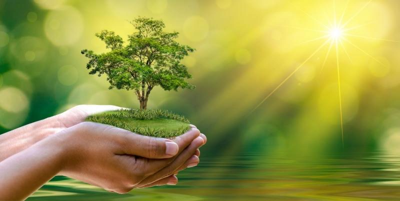 Så undviker du greenwash i din hållbarhetskommunikation
