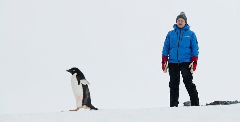 Pingviner kan få världens största reservat