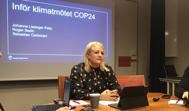 Pengarna det svåra inför klimatmötet i Polen