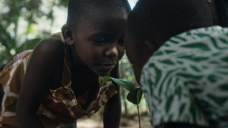 Miljö & Utveckling samarbetar med Vi-skogen