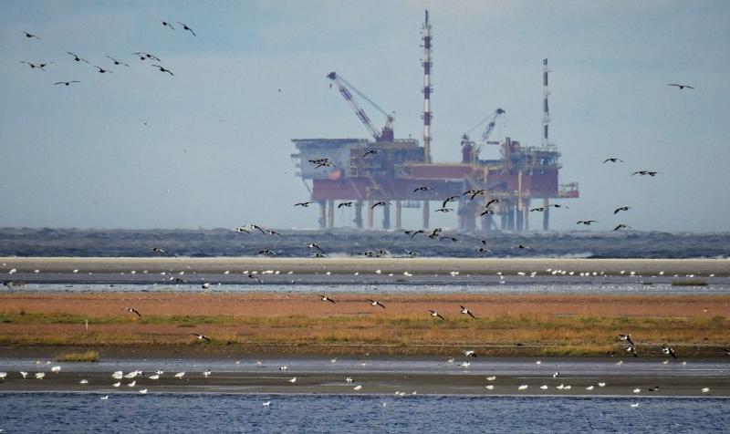 """Liberalerna: """"Subventioner och stöd till fossila bränslen måste bort"""""""