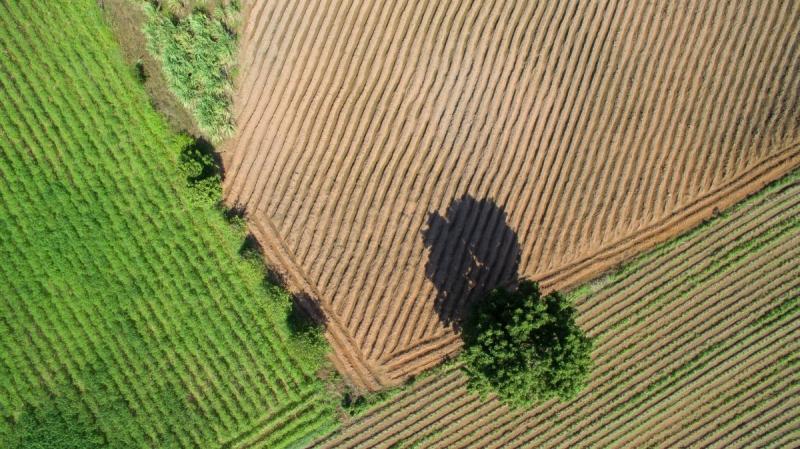 """Internationellt forskarteam: """"EU:s förslag till ny jordbrukspolitik håller inte måttet"""""""