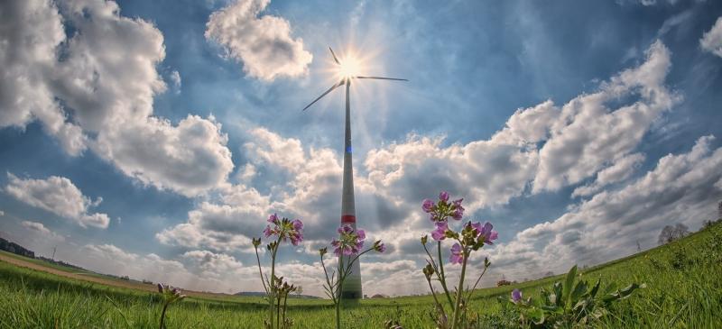 Energimyndigheten: 100 procent förnybar el möjligt