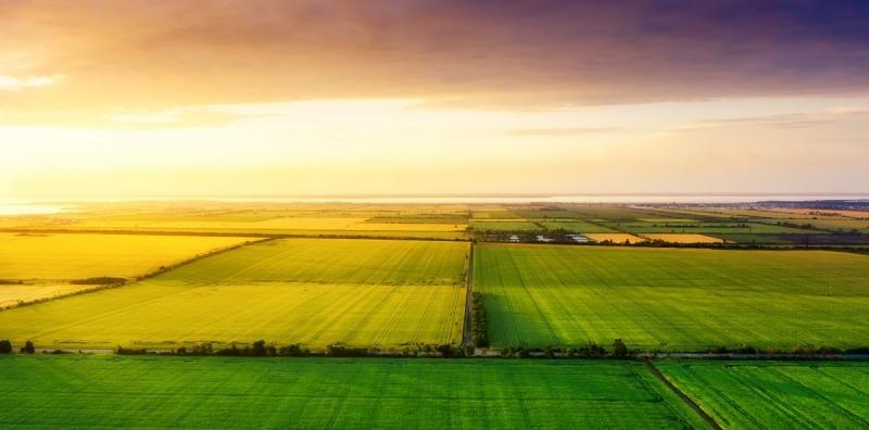 IPCC-rapporten om markanvändning på tre minuter