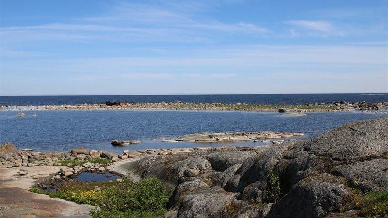 93 procent av Östersjöns skyddade områden saknar plan