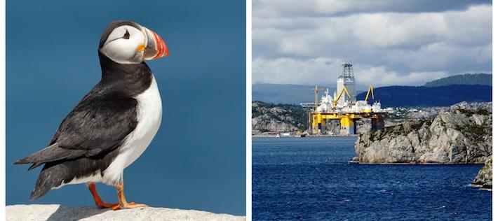 69 nya tillstånd för oljeborrning i Norge