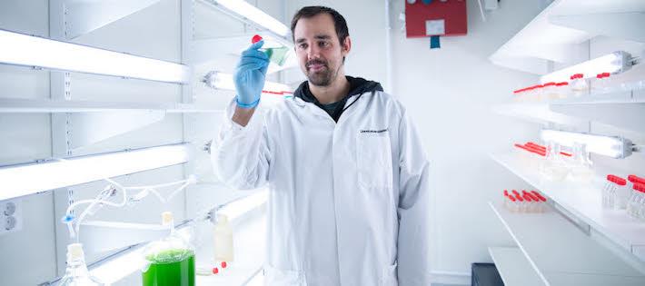 Havsbakterier är framtidens bevakningspersonal