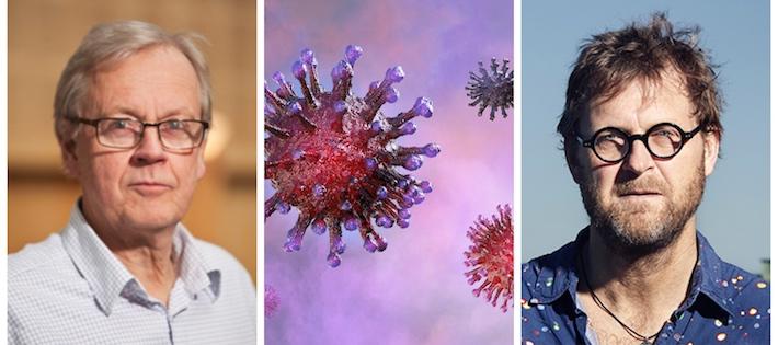 Tre miljöexperter: Så påverkas klimatet av coronaviruset
