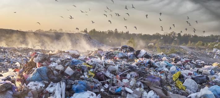 Ny studie: Papperspåsen inte alltid bäst för miljön