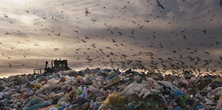 Oljepriset pressar plaståtervinnare