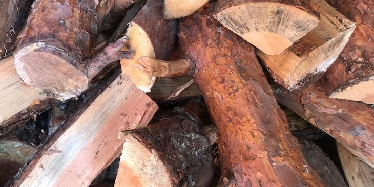Skogsbränslets klimatnytta ifrågasätts