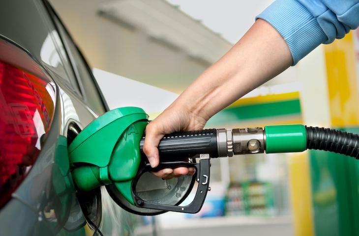 2019 dystert år för biodrivmedel