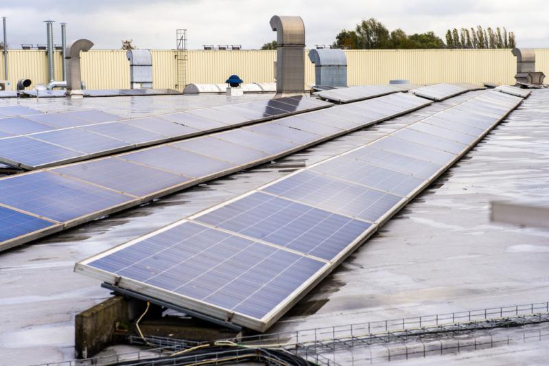 EU föreslår större andel förnybar energi i läckt utkast
