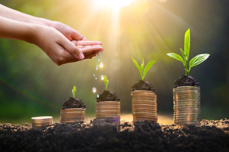 Ekonomi och hållbarhet går hand i hand