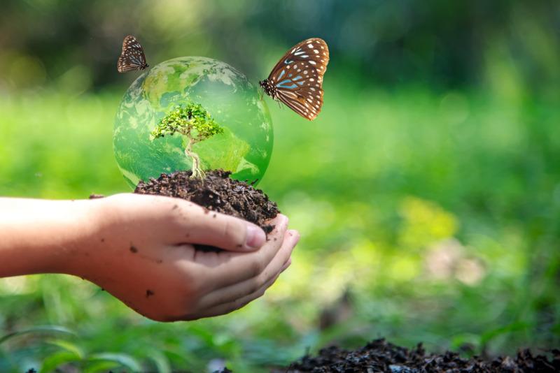 9 globala lyft för biologisk mångfald