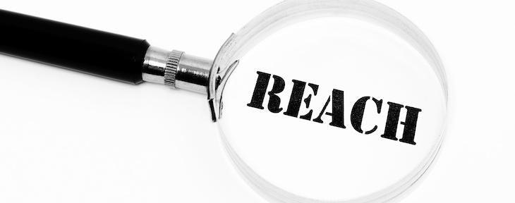 EU ser över Reach – tillståndsprövningen på bordet