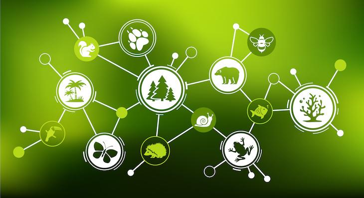 Få företag rapporterar om biodiversitet