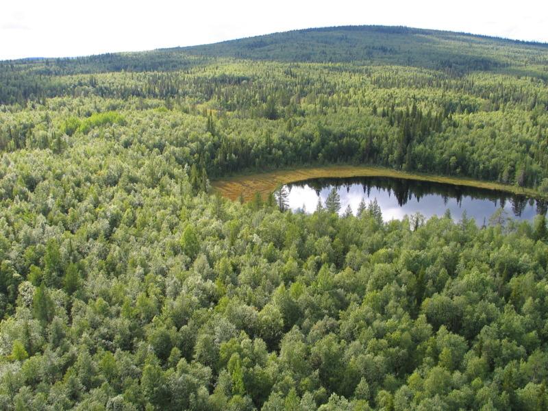 Naturvårdsverket granskar rapporteringen av skyddad natur