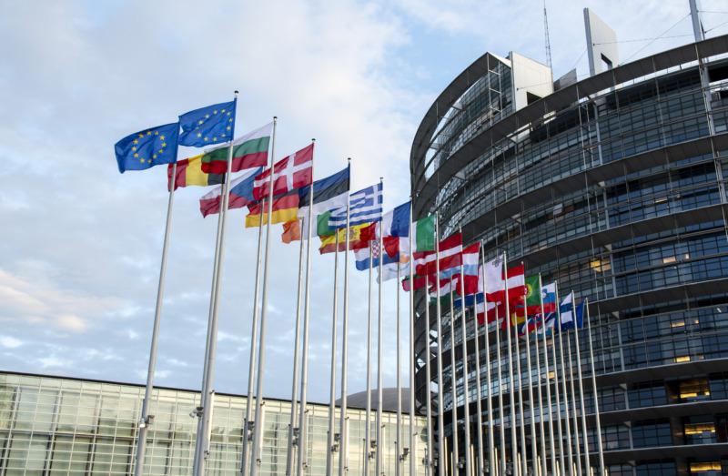 EU-parlamentet röstade för strategin om biologisk mångfald