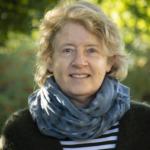 Inge Vierth,utredningsledare på VTI.