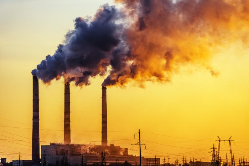 Fler vill att företag gör mer för att begränsa klimatförändringar